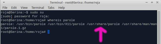 "How to fix Parole's ""GStreamer backend error"" in Xubuntu"